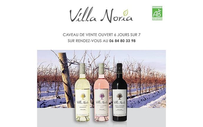 Préparez les fêtes avec Villa Noria !