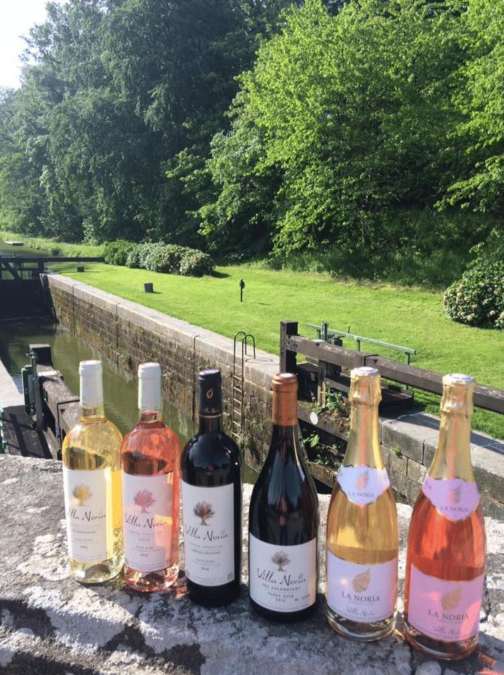 Gamme de vins biologiques Villa Noria