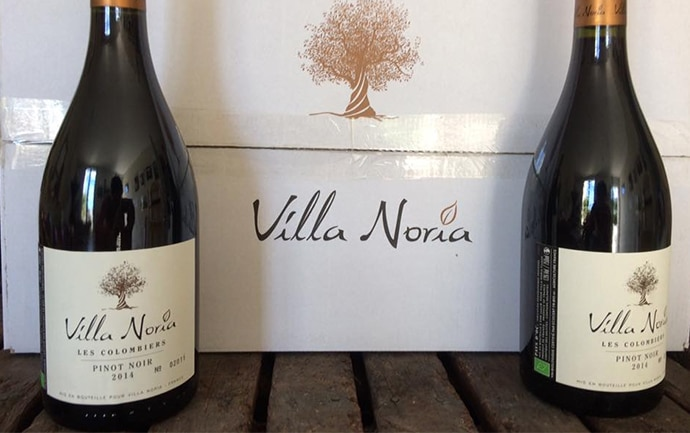 Packaging premium pour le Villa Noria Pinot Noir